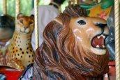 b2669-carousel_lion